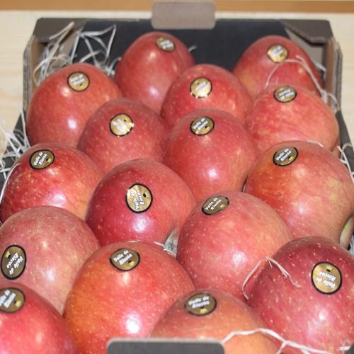 Manzana Fuji A Peso